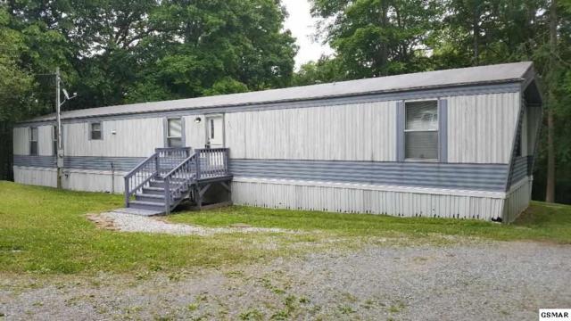 520 Fox Squirrel Way, Seymour, TN 37865 (#222405) :: Colonial Real Estate