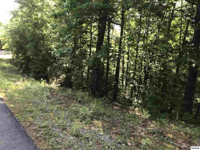Lot 3 Scenic Woods Way, Sevierville, TN 37876 (#222413) :: Prime Mountain Properties