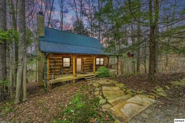 2983 Walden Flats Way, Sevierville, TN 37862 (#222433) :: Prime Mountain Properties