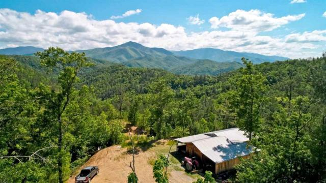 3234 Messer Branch Rd, Hartford, TN 37753 (#222460) :: Prime Mountain Properties