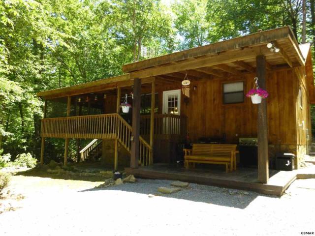 3390 Rocky Ridge Rd., Cosby, TN 37722 (#222559) :: Prime Mountain Properties