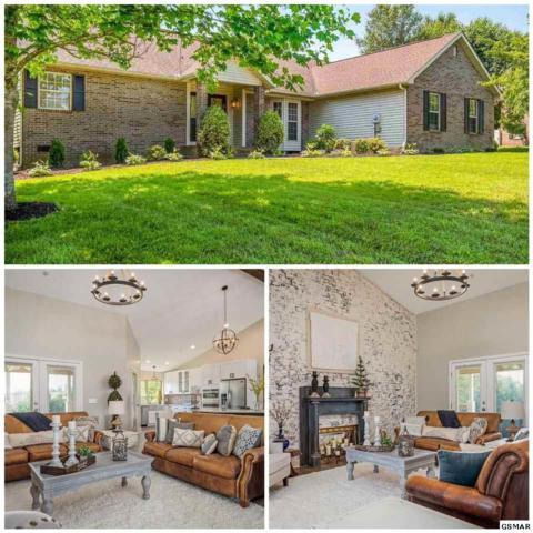 3476 Bentwood Drive, Kodak, TN 37764 (#222565) :: Colonial Real Estate