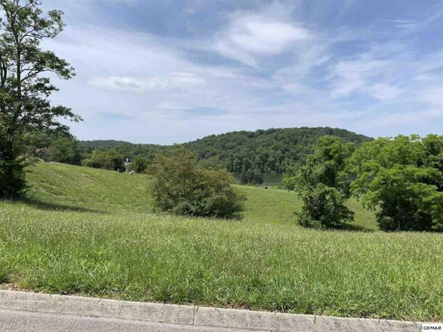 2058 Turners Landing Road, Russellville, TN 37896 (#222606) :: Four Seasons Realty, Inc