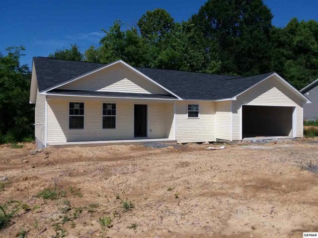 1130 Rosella Dr, White Pine, TN 37890 (#222933) :: The Terrell Team