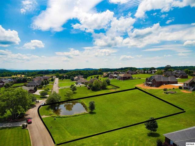Kentucky St, Seymour, TN 37865 (#222941) :: Prime Mountain Properties