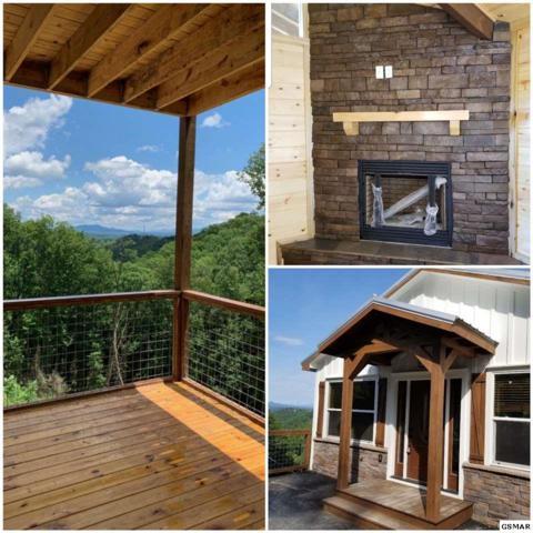 957 Cliff Branch Rd, Gatlinburg, TN 37738 (#222945) :: Prime Mountain Properties