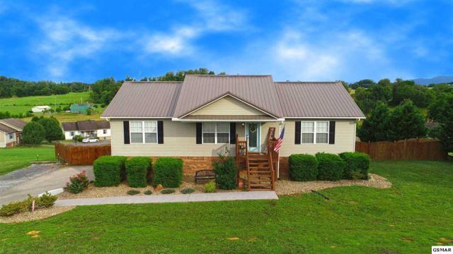 1623 Silverado Court, Sevierville, TN 37876 (#222956) :: Prime Mountain Properties