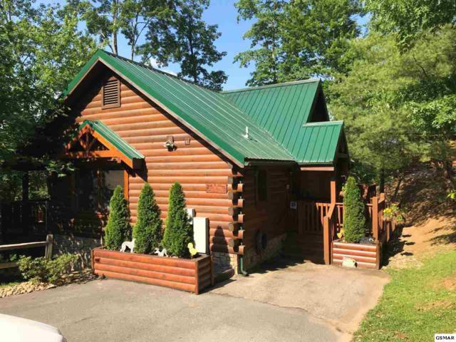 Gatlinburg, TN 37738 :: Colonial Real Estate
