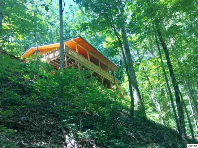 2726 Mountain Blvd, Sevierville, TN 37876 (#223004) :: Prime Mountain Properties