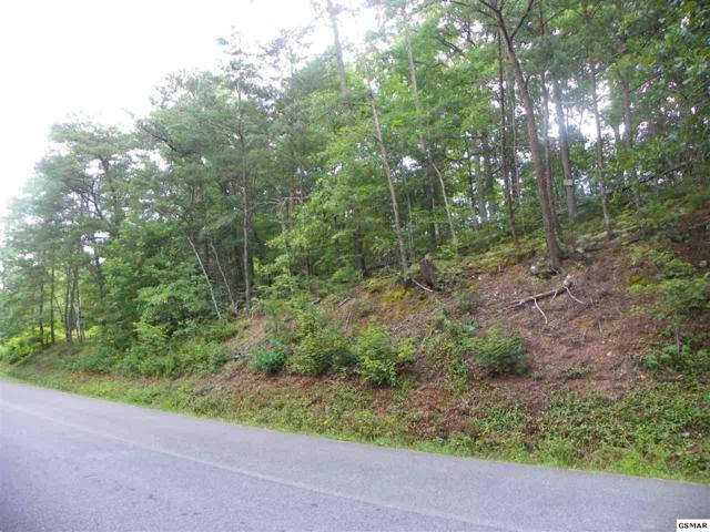 Lot#PT 28 Dogwood Loop Drive, Sevierville, TN 37876 (#223108) :: Prime Mountain Properties