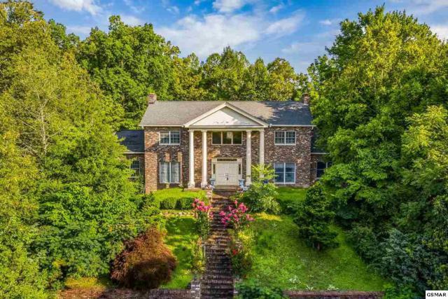673 Glades Rd, Gatlinburg, TN 37738 (#223114) :: Jason White Team   Century 21 Four Seasons