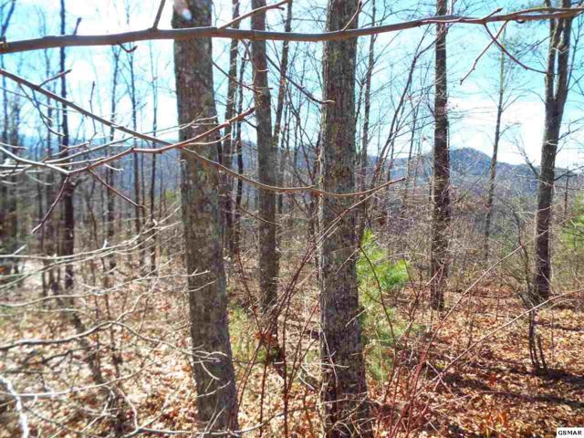 Lot 150E Harmony Hills Lane, Sevierville, TN 37862 (#223119) :: Prime Mountain Properties