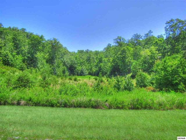 Lot 398 W Mountain Dr, Rockwood, TN 27854 (#223260) :: The Terrell Team