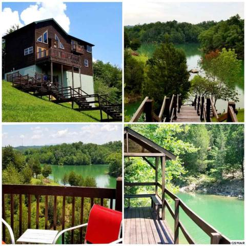 2350 Kerr Rd, Sevierville, TN 37876 (#223283) :: Colonial Real Estate