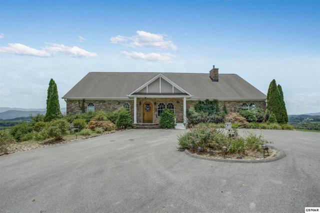 115 Ruth Lane, Sevierville, TN 37862 (#223316) :: Colonial Real Estate
