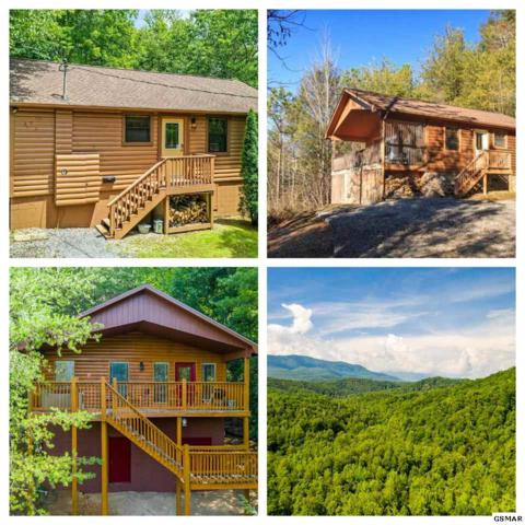 4501 Donna Allen Way Country Bear, C, Cosby, TN 37722 (#223370) :: Colonial Real Estate