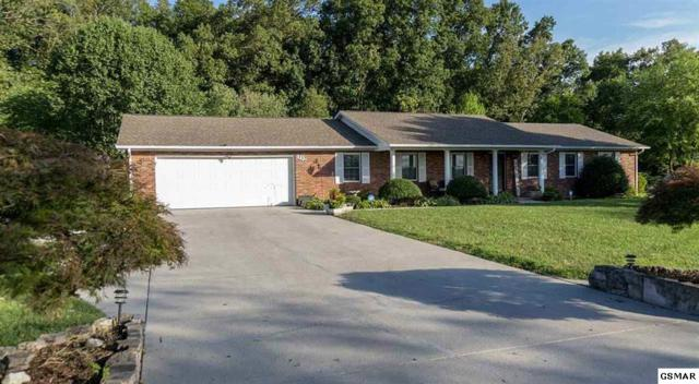 1332 Clinch View Circle, Jefferson City, TN 37760 (#223504) :: Colonial Real Estate