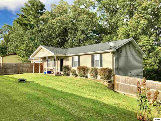 318 Idlewild Drive, White Pine, TN 37890 (#223545) :: Billy Houston Group