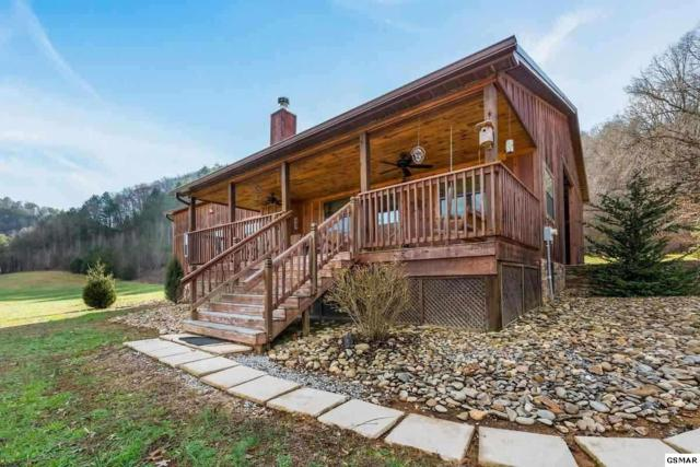 4523 South Yellow Breeches Creek Rd, Cosby, TN 37722 (#223563) :: SMOKY's Real Estate LLC