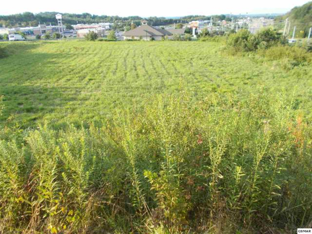 LOT 6 Epley Road, Newport, TN 37821 (#223742) :: Colonial Real Estate