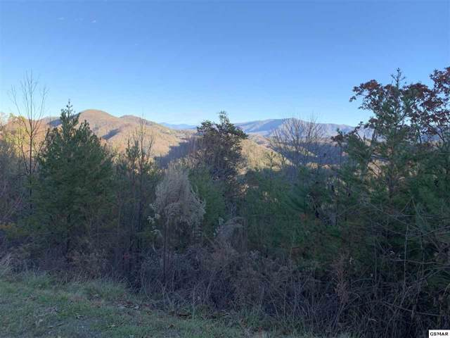 Lot 40W 4978 Long Rifle Road, Walland, TN 37886 (#223749) :: Four Seasons Realty, Inc