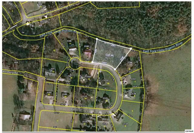 Lot 9 Aaron Ct., Sevierville, TN 37876 (#223823) :: The Terrell Team