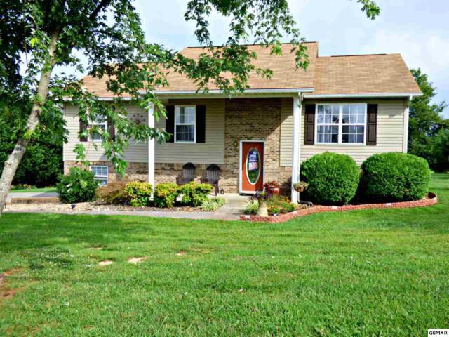 322 Leeper Overlook, Dandridge, TN 37725 (#223858) :: Colonial Real Estate