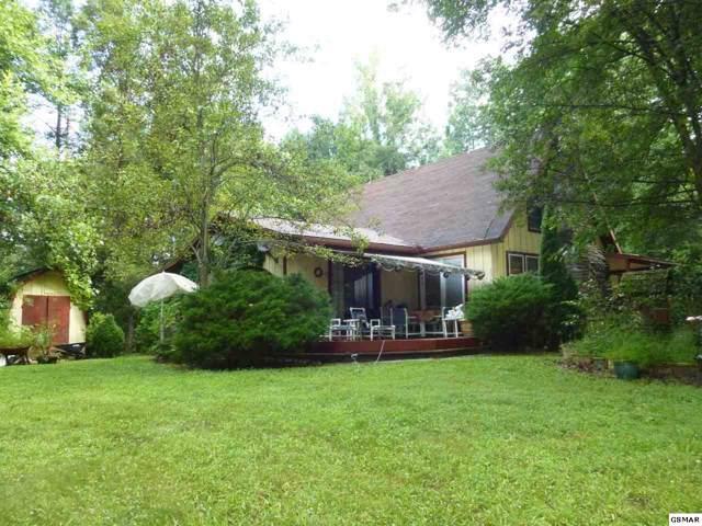 154 Hollow Rd., Cosby, TN 37722 (#223961) :: Four Seasons Realty, Inc