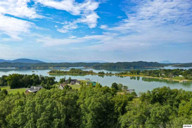 Lot 4 Harbor Lane, Dandridge, TN 37725 (#223966) :: Four Seasons Realty, Inc