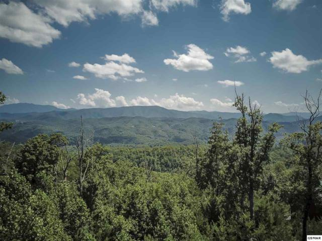 lot 90 Smoky Bluff Trl, Sevierville, TN 37862 (#224015) :: Colonial Real Estate