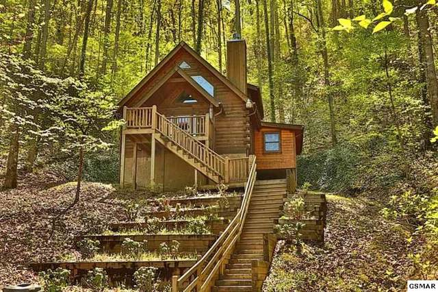 2220 Flying Squirrel Way, Sevierville, TN 37862 (#224634) :: Prime Mountain Properties