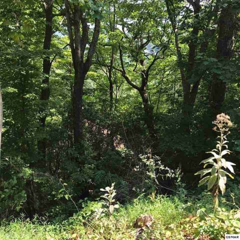 Lot #5 Luzerne Dr., Gatlinburg, TN 37738 (#224665) :: Colonial Real Estate