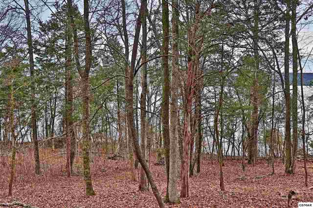 Lot 113 E Shore Dr, Rockwood, TN 37854 (#224694) :: The Terrell Team
