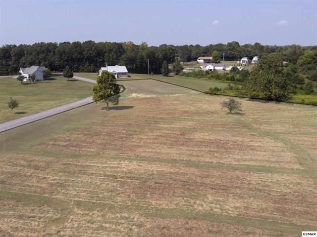 Lot 16 Horizon Drive, Baneberry, TN 37890 (#224731) :: Billy Houston Group