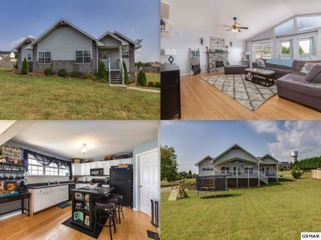 1342 Hodges Bend Rd, Sevierville, TN 37876 (#224773) :: Colonial Real Estate