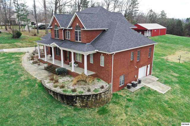 1875 Fain Cemetery Road, Dandridge, TN 37725 (#225246) :: Four Seasons Realty, Inc