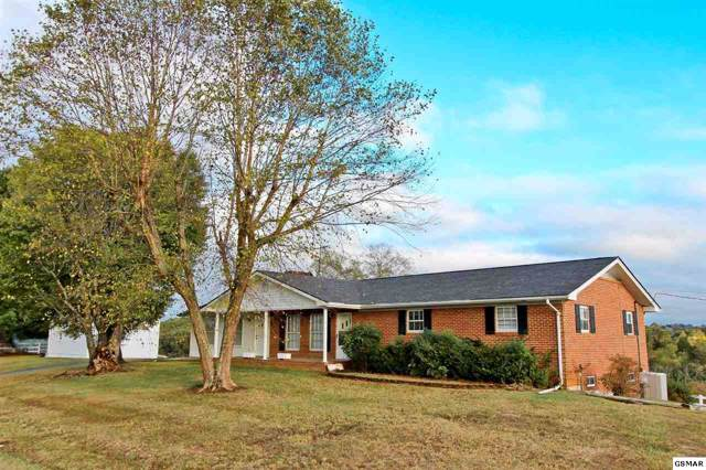 2485 Timber Ridge Rd, Greeneville, TN 37743 (#225281) :: Colonial Real Estate
