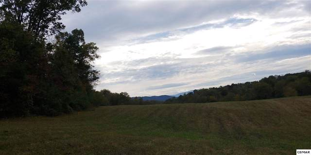 6.97 Acres Murray Branch Dr, Newport, TN 37821 (#225295) :: Colonial Real Estate