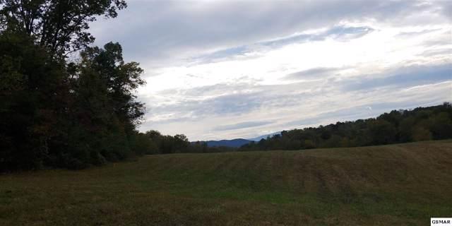 6.97 Acres Murray Branch Dr, Newport, TN 37821 (#225295) :: SMOKY's Real Estate LLC