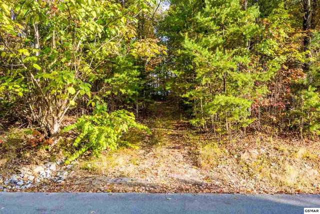 Lot 124E Settlers View Lane, Sevierville, TN 37876 (#225367) :: Colonial Real Estate