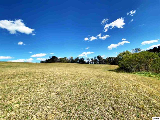 Lot 3 Holston View Road, New Market, TN 37820 (#225480) :: The Terrell Team