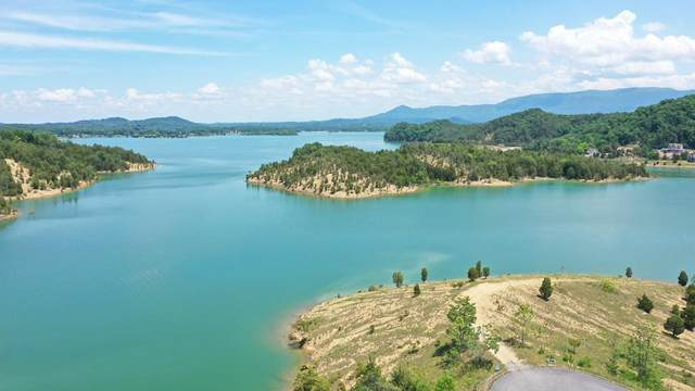 Lot 31 Emerald Isle Blvd, Sevierville, TN 37876 (#225583) :: Colonial Real Estate