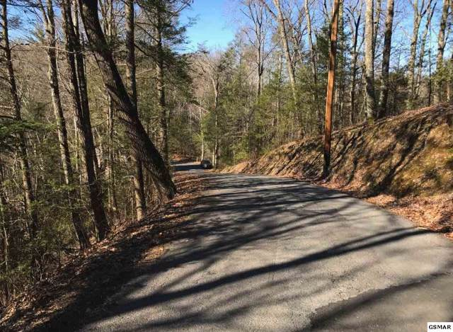 Lot 23 Headrick Lead, Sevierville, TN 37862 (#225668) :: The Terrell Team