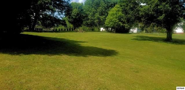 Lots 51 & pt52 Lake Forest Circle, Talbott, TN 37877 (#225688) :: Four Seasons Realty, Inc