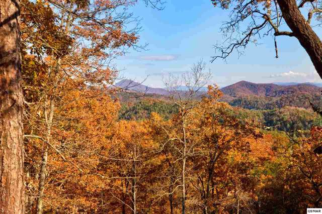 Lot 14 Autumn Ridge Way Lot 14, Sevierville, TN 37876 (#225774) :: Jason White Team | Century 21 Four Seasons
