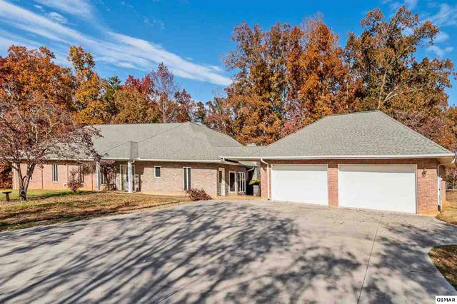 1317 Americana Drive, Pigeon Forge, TN 37863 (#225808) :: Colonial Real Estate