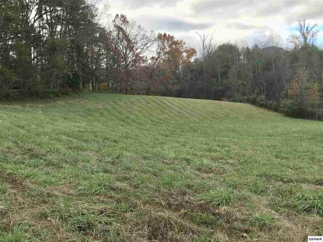 Lot 48 Robert Ridge Road, Sevierville, TN 37862 (#225913) :: Colonial Real Estate