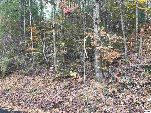 Lot 19A Sencebaugh Dr., Sevierville, TN 37862 (#225920) :: Jason White Team | Century 21 Four Seasons