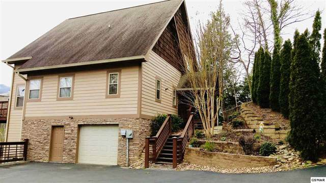 230 Stott Ln, Gatlinburg, TN 37738 (#226435) :: Colonial Real Estate