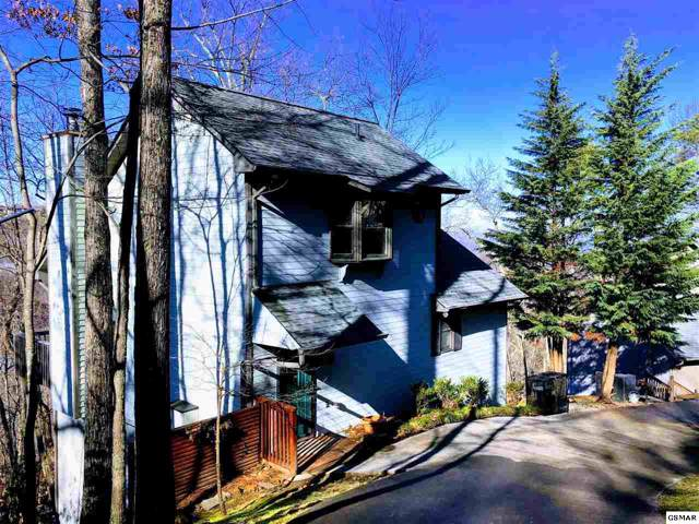 "1523 Gillespie Way ""Bear Necessiti, Gatlinburg, TN 37738 (#226492) :: Colonial Real Estate"